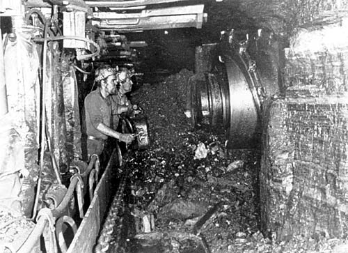 The size of the modern shearing machines can be seen from this photograph. The coal is automatically cut and loaded onto a conveyor belt for transport to the pit bottom.