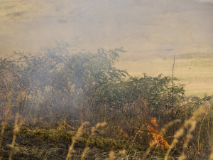 burning fields to prepare for new crops