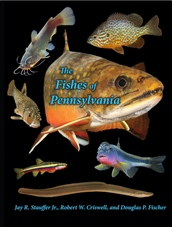 fishes-book-cover