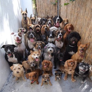 this is what heaven looks like probably