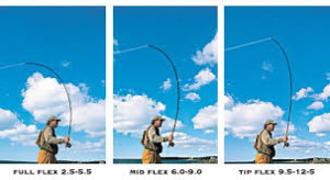 http://www.orvis.com/news/fly-fishing/pro-tip-understanding-rod-action-and-choosing-the-right-rod-for-you/