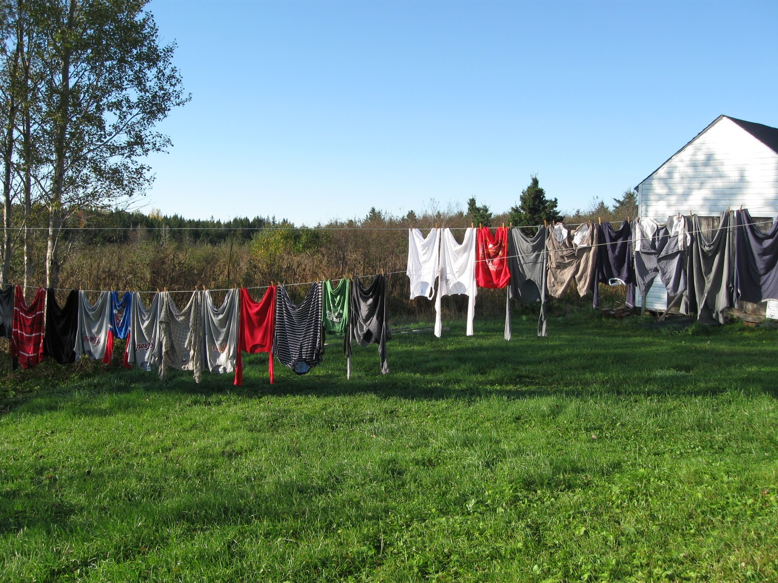 Hanging your clothes under sun OR using laundry dryer | SiOWfa15 ...