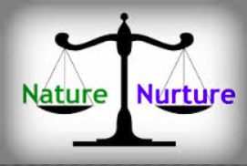 what is meant by nature vs nurture