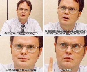 Dwight Survival of the Fittest
