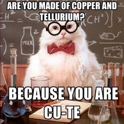 chemistry-pickup-cat