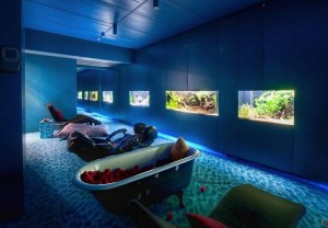 Relaxation Room at Google