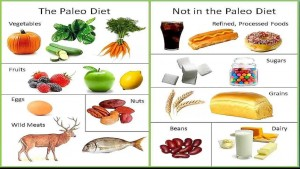 paleo-foods-paleo-food-list-paleo-diet-recipes