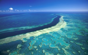 https://cfoster600.wordpress.com/2013/11/06/great-barrier-reef/