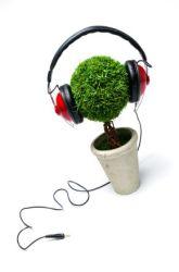 music-and-plants-1