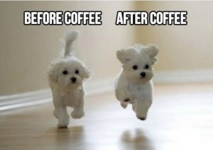 funny-coffee-meme-images