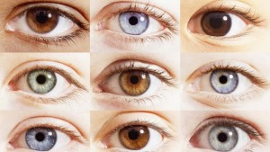 percentages-different-eye-colors_703879294564d82d
