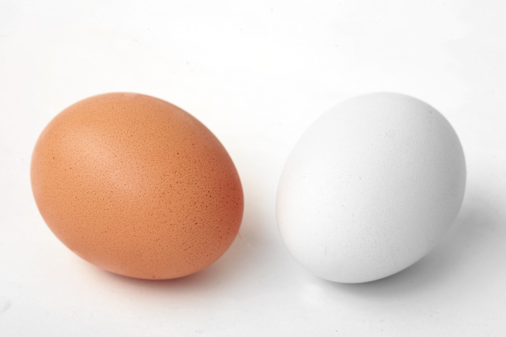 white-chicken-eggs-wallpaper-1