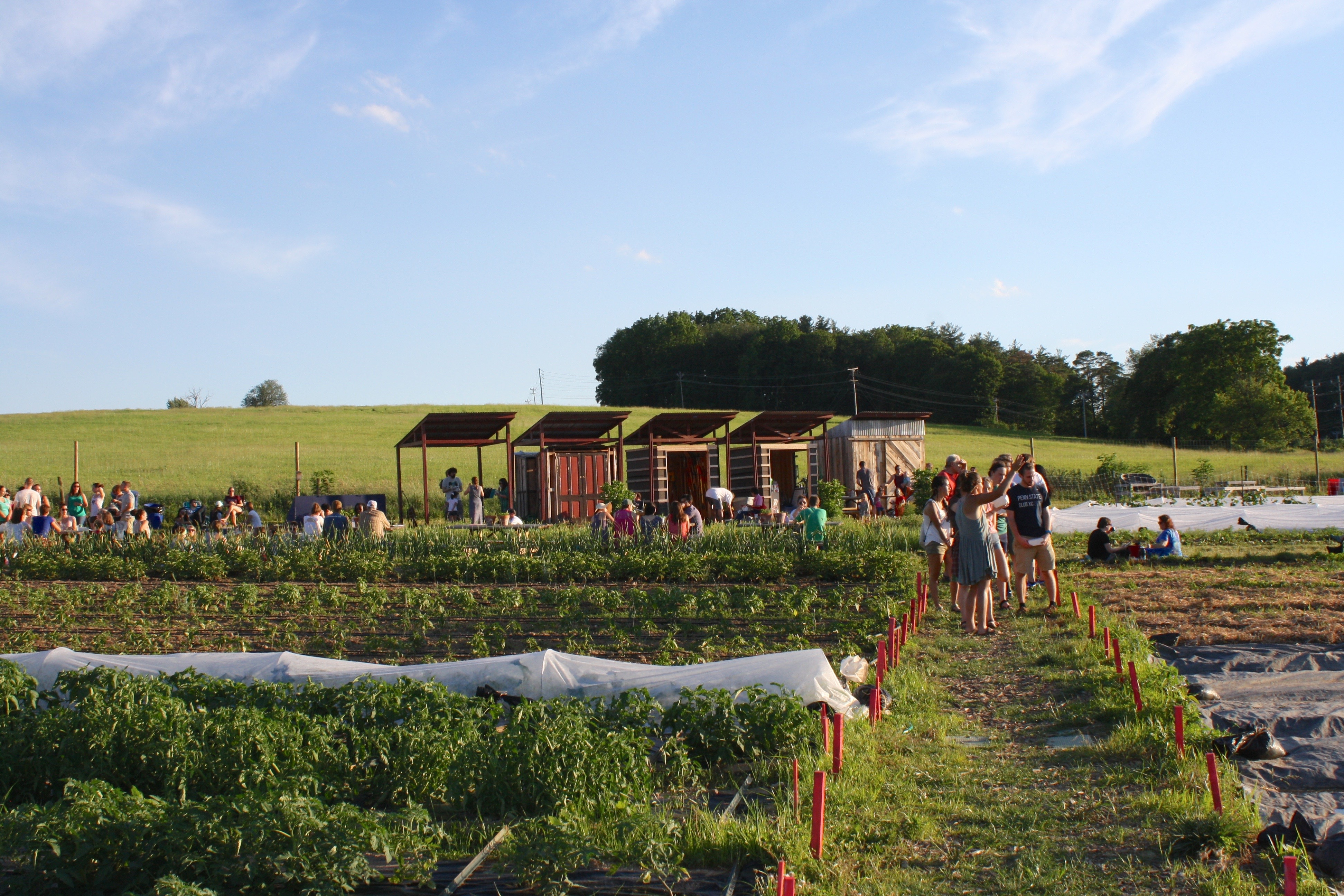 Student Farm at Penn State Growing engagement with our food system