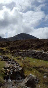 Mountain Scene in Connemara