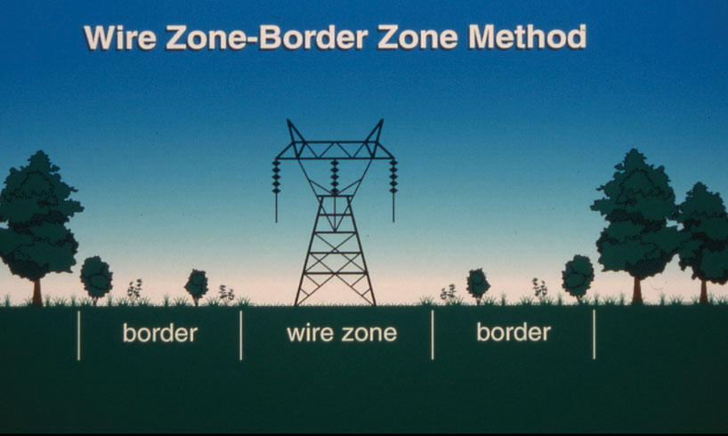 Wire Zone-Border illustration