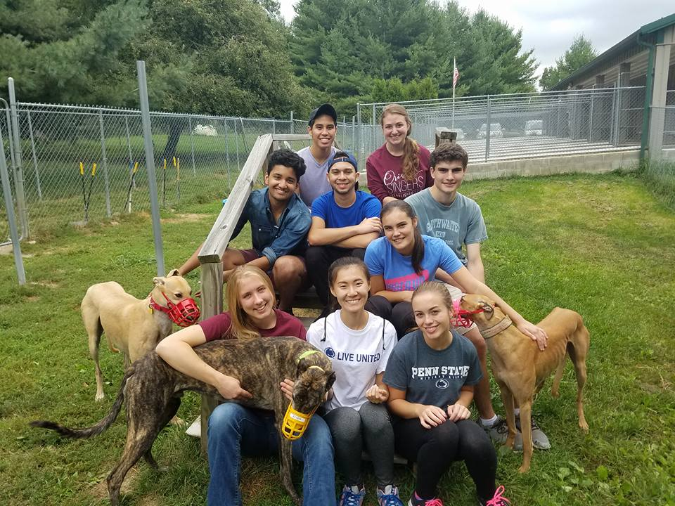 Penn State Student United Way sits for a group picture with greyhound rescues. Image Credit: Nicole Bienert