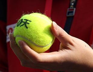 Tennis ball in standard color