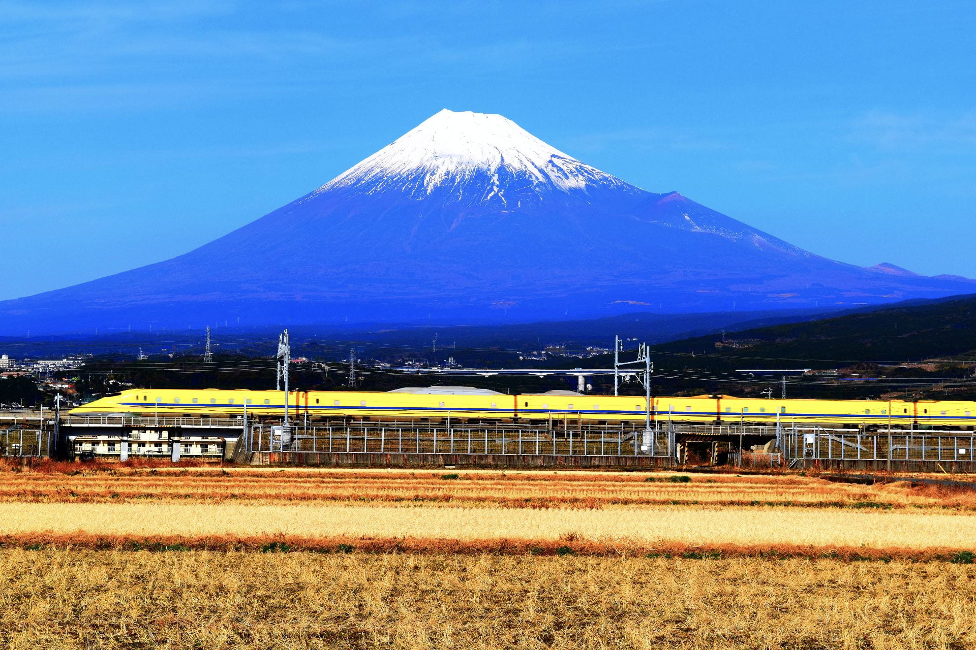 Dr. Yellow by Mount Fuji © Nate Hemerly, D.O., Department of Family and Community Medicine