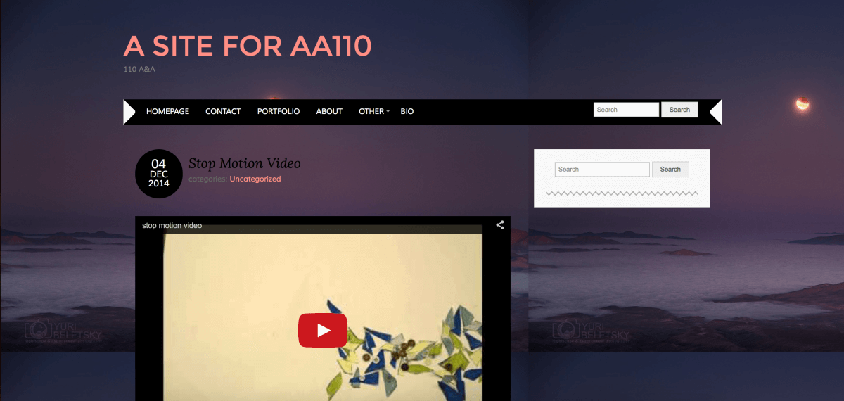 A Site for AA110